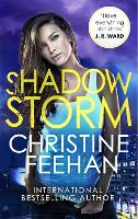 Shadow Storm (The Shadow Series)