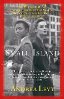 Small Island: Winner of the 'best of the best' Orange Prize: Andrea Levy