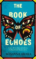 The Book Of Echoes: The 'powerfully redemptive' debut of love and hope rippling across generations