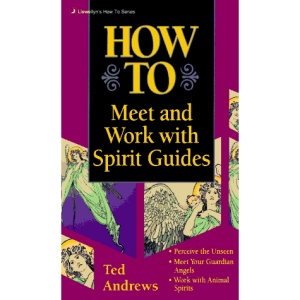 How to Meet and Work with Spirit Guides (Llewellyn's Practical Guide to Personal Power)